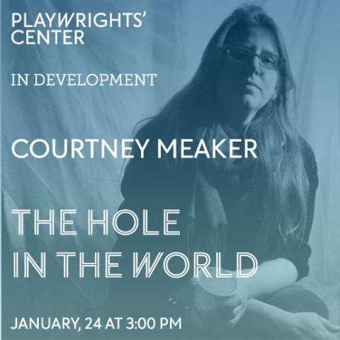 The Hole In The World by Courtney Meaker