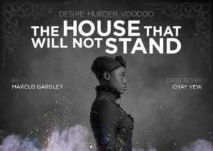 The House That Will Not Stand at Victory Gardens Theater